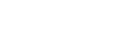 BD TAX & FINANCE GROUP, INC.